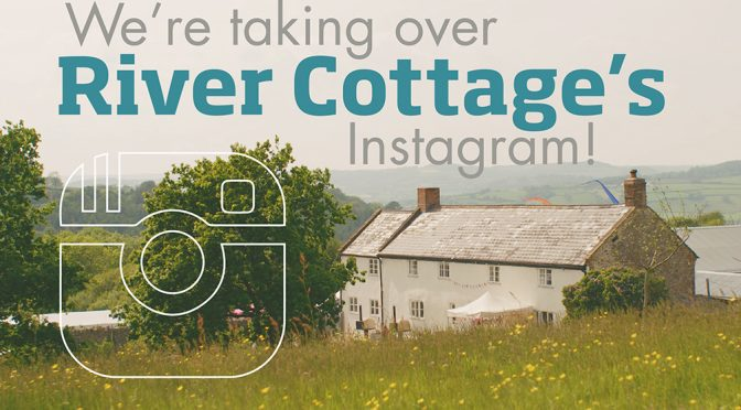 River Cottage IG